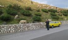 Alpentour 2015 Tag4 085