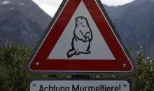Alpen Tag 1 062