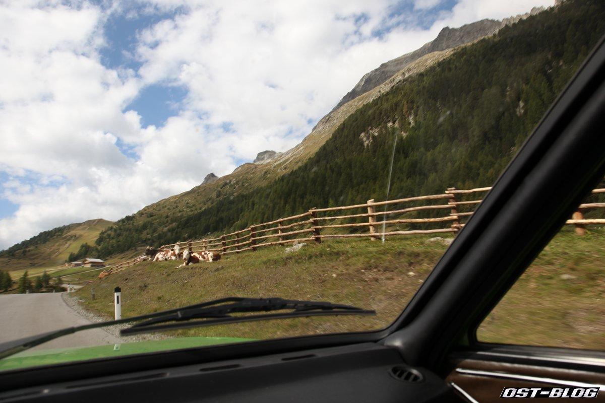 Alpen Tag 2 025