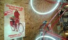 heidemann-lady-bike