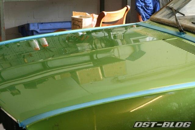 Passat TS Motorhaube poliert