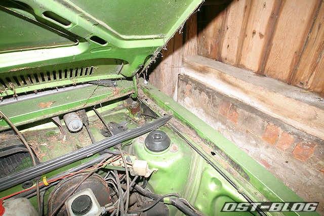 Passat L 1976 viperngrün