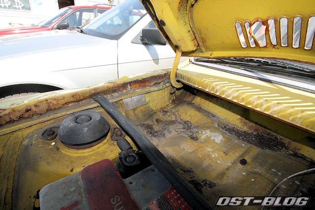 Passat-TS-Motorhaube